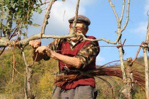 Lunigiana: terra di tradizioni contadine